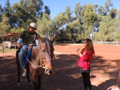 Exercice avec les chevaux