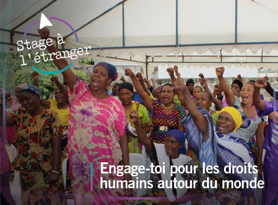 Stages en Droits de l'Homme & droit à l'étranger