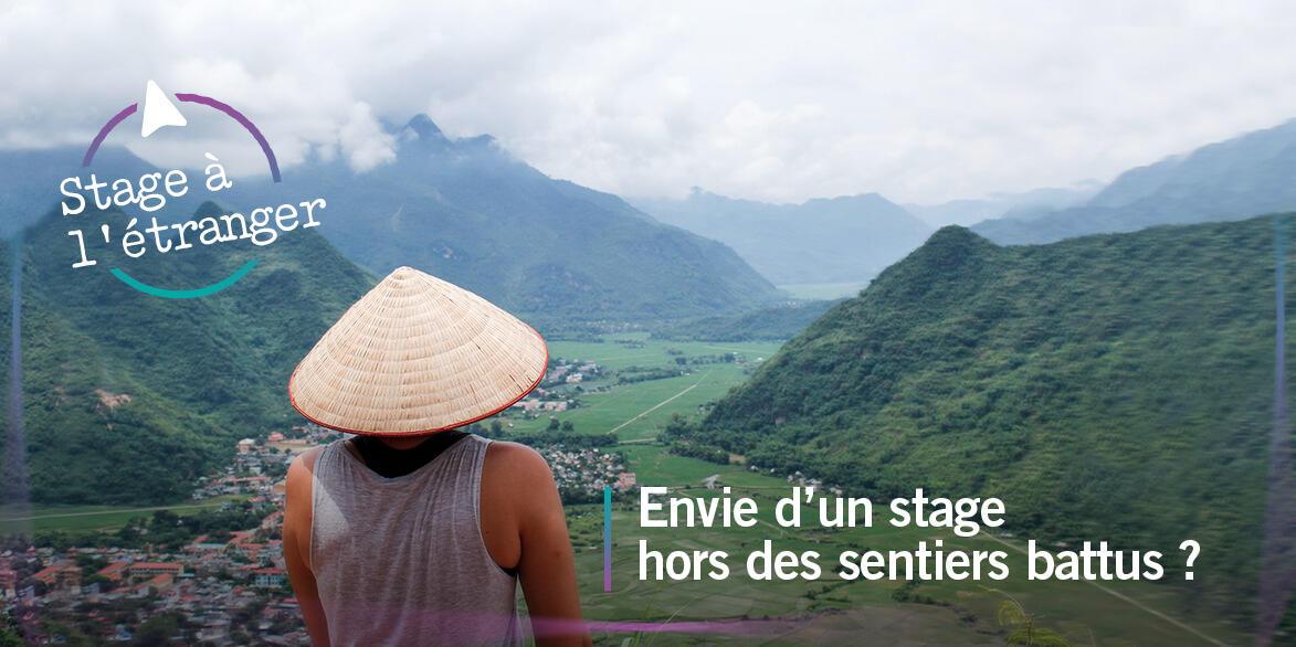 Stage à l'étranger