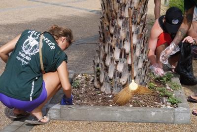 Des bénévoles ramassent des mégots de cigarettes