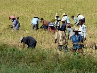 Defendre les droits des travailleurs au Cambodge