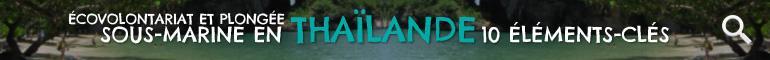 Ecovolontariat en Thaïlande 10 Éleménts-Clés