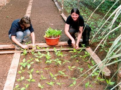 Stage en agriculture biologique