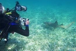 Etre volontaire au Belize avec Projects Abroad : Ecovolontariat &   environnement