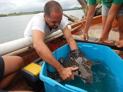 Instructeur sur le projet écovolontariat aux îles Fidji