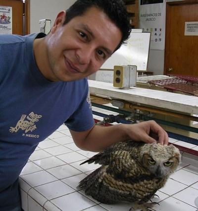 Mission soins animaliers en Amérique Latine
