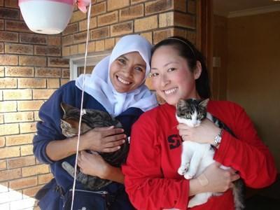 Mission humanitaire animaux à l'étranger