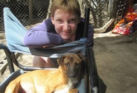 Mission de volontariat auprès d'animaux:médecine vétérinaire et soins animaliers : Argentine