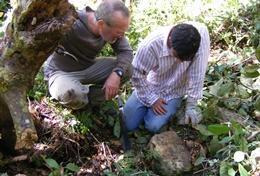 Volontariat international pour les professionnels : Archéologie
