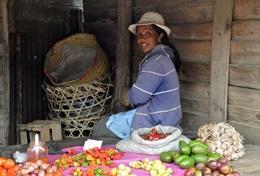 Etre volontaire à Madagascar avec Projects Abroad : Cours de langues et   séjours linguistiques